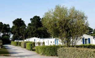 Location Chalet luxe Morbihan